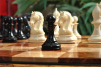 The Mammoth Ivory and Genuine Ebony Collector Series Luxury Chess Set