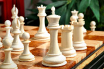 The Mammoth Ivory and Genuine Ebony Collector Series Luxury Chess Set - White Ivory Pieces.