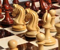 The Exotique Collection - Imperial Collector Chess Set, Box, & Board Combination - Knight Piece